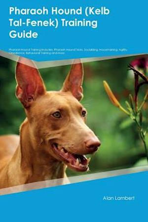 Bog, hæftet Pharaoh Hound (Kelb Tal-Fenek) Training Guide Pharaoh Hound Training Includes: Pharaoh Hound Tricks, Socializing, Housetraining, Agility, Obedience, B af Colin Bailey