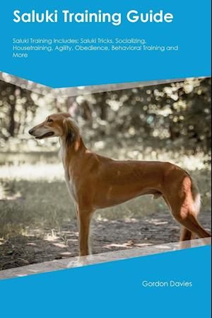 Bog, hæftet Saluki Training Guide Saluki Training Includes: Saluki Tricks, Socializing, Housetraining, Agility, Obedience, Behavioral Training and More af John Alsop