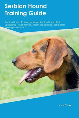 Bog, hæftet Serbian Hound Training Guide Serbian Hound Training Includes: Serbian Hound Tricks, Socializing, Housetraining, Agility, Obedience, Behavioral Trainin af Richard Mills