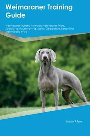 Bog, hæftet Weimaraner Training Guide Weimaraner Training Includes: Weimaraner Tricks, Socializing, Housetraining, Agility, Obedience, Behavioral Training and Mor af Jason Allan