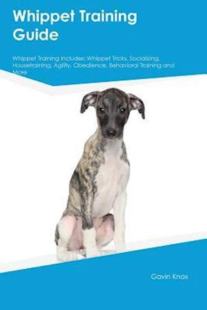 Bog, hæftet Whippet Training Guide Whippet Training Includes: Whippet Tricks, Socializing, Housetraining, Agility, Obedience, Behavioral Training and More af Gavin Knox