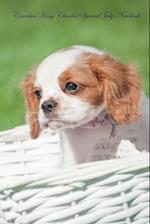 Cavalier King Charles Spaniel July Notebook Cavalier King Charles Spaniel Record, Log, Diary, Special Memories, To Do List, Academic Notepad, Scrapbo