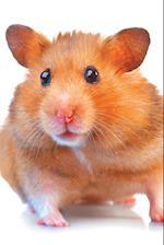 Hamster Notebook & Journal. Productivity Work Planner & Idea Notepad