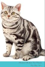 American Shorthair Cat Presents: Cat Facts Workbook. American Shorthair Cat Presents Cat Facts Workbook with Self Therapy, Journalling, Productivity