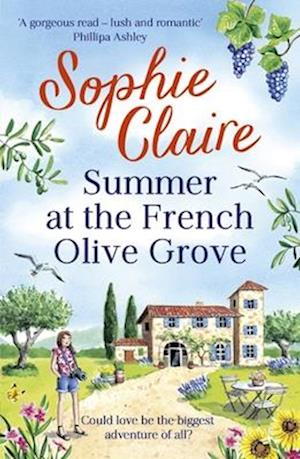 Summer at the French Olive Grove