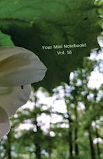 Your Mini Notebook! Vol. 16