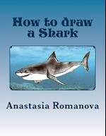 How to Draw a Shark