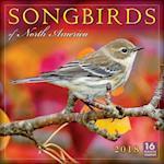 Songbirds of North America 2018 Calendar