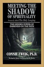 Meeting the Shadow of Spirituality: The Hidden Power of Darkness on the Path