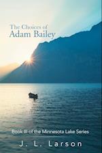 The Choices of Adam Bailey: Book III of the Minnesota Lake Series