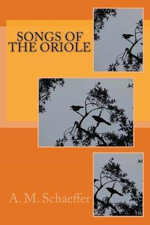 Bog, paperback Songs of the Oriole af A. M. Schaeffer