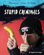 Stupid Criminals (Stranger Than Fiction)