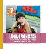 Ladybug Foundation (Community Connections How Do They Help)