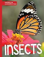 Insects (Animal Classification)