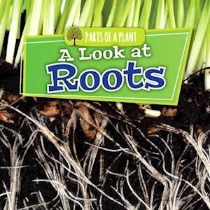 A Look at Roots