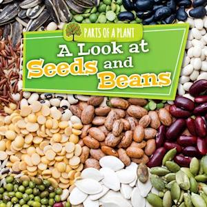 A Look at Seeds and Beans