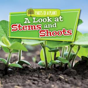 A Look at Stems and Shoots
