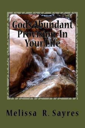 Bog, paperback God's Abundant Provision in Your Life af Melissa R. Sayres