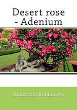 Desert Rose-Adenium