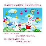 Harry Knows His Numbers