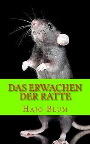 Das Erwachen Der Ratte