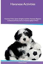 Havanese Activities Havanese Tricks, Games & Agility. Includes af Connor Poole