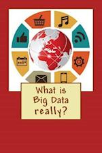 What Is Big Data? af R. Concessao