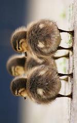 Duck Butts Journal af S'Cute Press