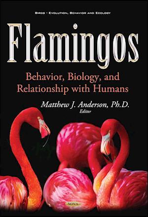 Bog, paperback Flamingos af Matthew J. Anderson