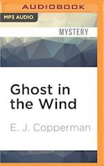 Ghost in the Wind (Haunted Guesthouse Mystery)