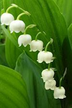 A Lily of the Valley Flower Journal