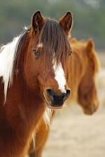 A Chestnut Brown Horse with White Blaze and Long Mane Journal