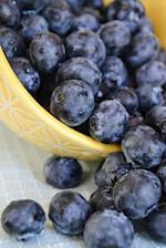 Blueberries in a Yellow Bowl Fruit/Food Journal