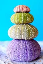Colorful Sea Urchins in the Sand Journal