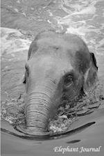 Elephant Journal af T. Thaphada Journal