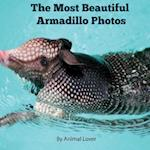 The Most Beautiful Armadillo Photos