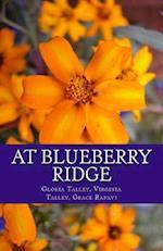 At Blueberry Ridge