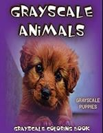 Grayscale Animals Puppies af Grayscale Animals