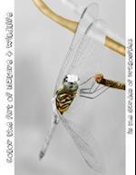 In the Garden of Dragonflies af Tiffany Skora