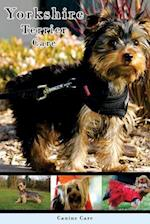 Yorkshire Terrier Care