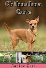 Chihuahua Care