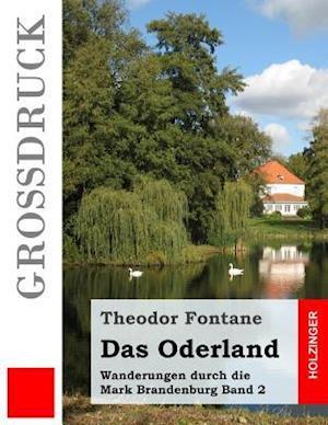 Bog, paperback Das Oderland (Grodruck) af Theodor Fontane