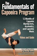 The Fundamentals of Brazilian Capoeira Program