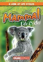 Mammal Life Cycles (Look at Life Cycles)