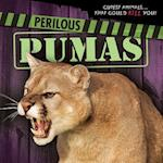 Perilous Pumas (Cutest Animals That Could Kill You)