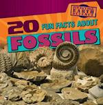 20 Fun Facts about Fossils (Fun Fact File Earth Science)