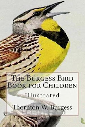 Bog, paperback The Burgess Bird Book for Children af Thornton W. Burgess