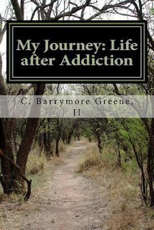 Bog, paperback My Journey af MR C. Barrymore Greene II
