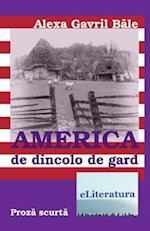 America de Dincolo de Gard af Alexa Gavril Bale