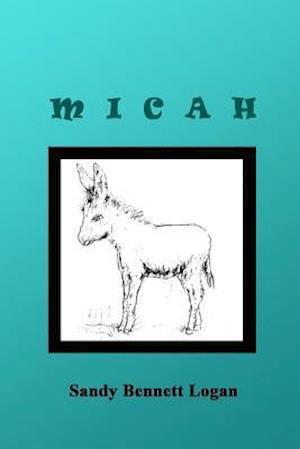 Bog, paperback Micah af Sandy Bennett Logan